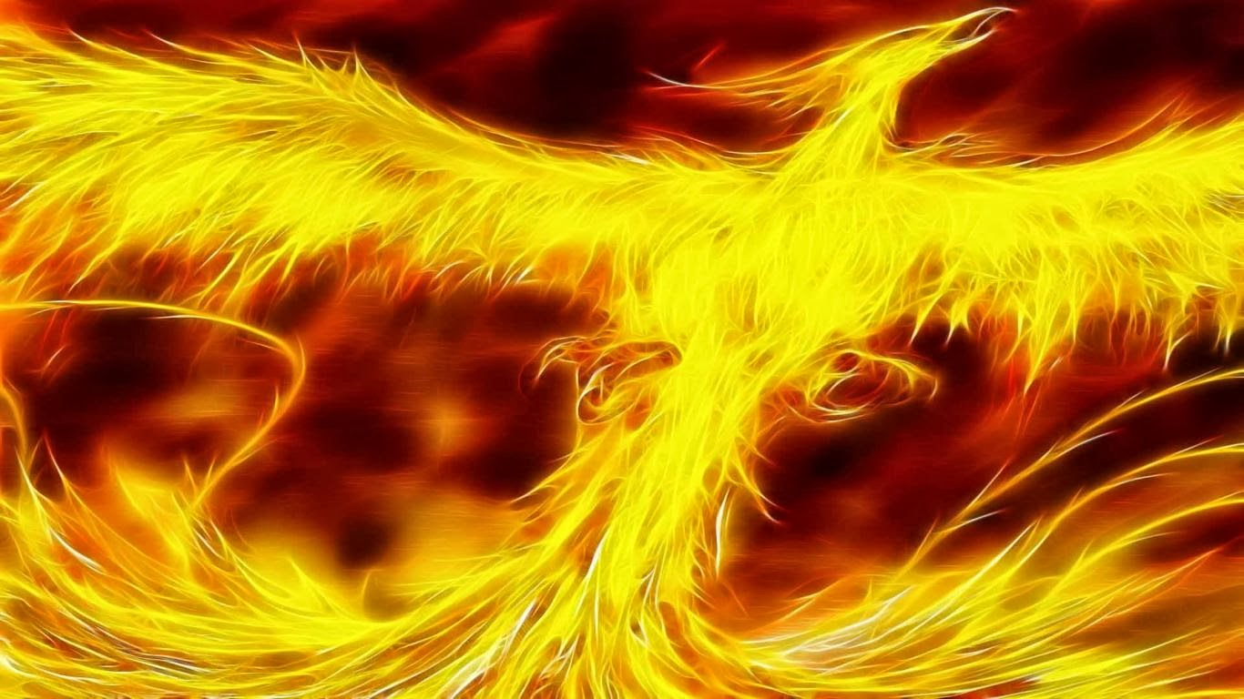 Cool Phoenix Bird Wallpaper, Download Cool Phoenix Bird Wallpaper