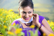 Hari priya photo shoot among yellow folwers-thumbnail-14