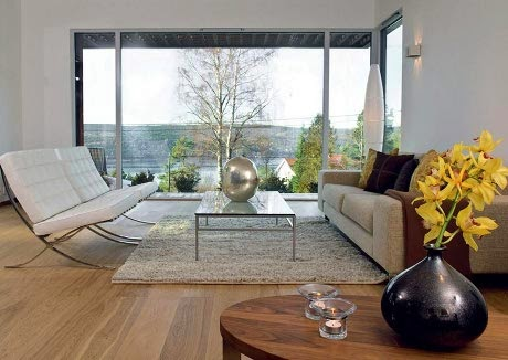 healthy living room with large glass window