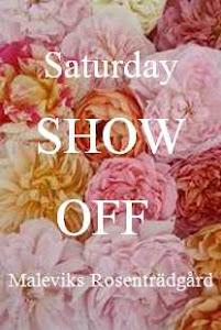 Show off  hver helg:))