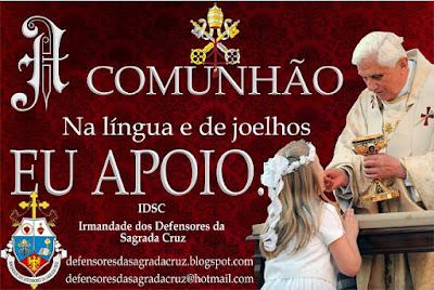 http://defensoresdasagradacruz.blogspot.com.br/search/label/Sagrada%20Comunh%C3%A3o
