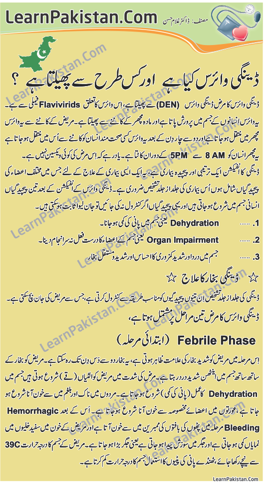 dengue fever in pakistan essay 4 december 2011 dengue(in urdu) posted by kashif imran at advertisements  dengue fever in pakistan essay org the dengue fever arbovirus is endemic and  our.