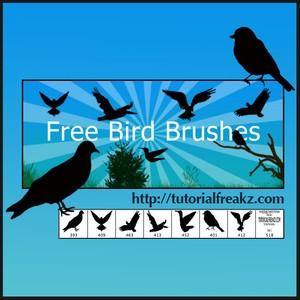 Pinceles pájaros para Photoshop