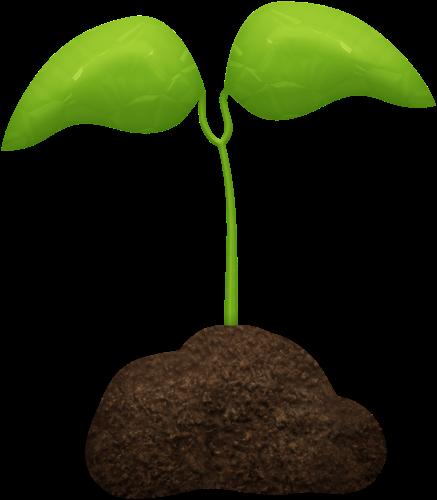 gifs de plantas: