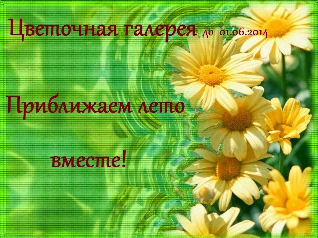 Цветочная Галерея