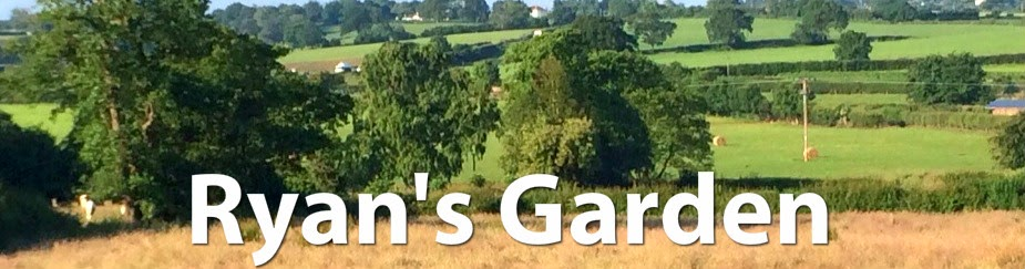 Ryan's Garden