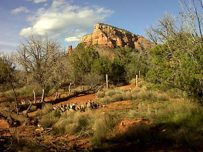Sedona Red Rocks by Kaliani Devinne, copyright 2013