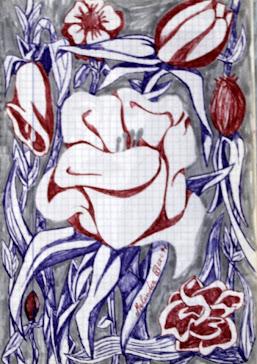Flores  28-2-97