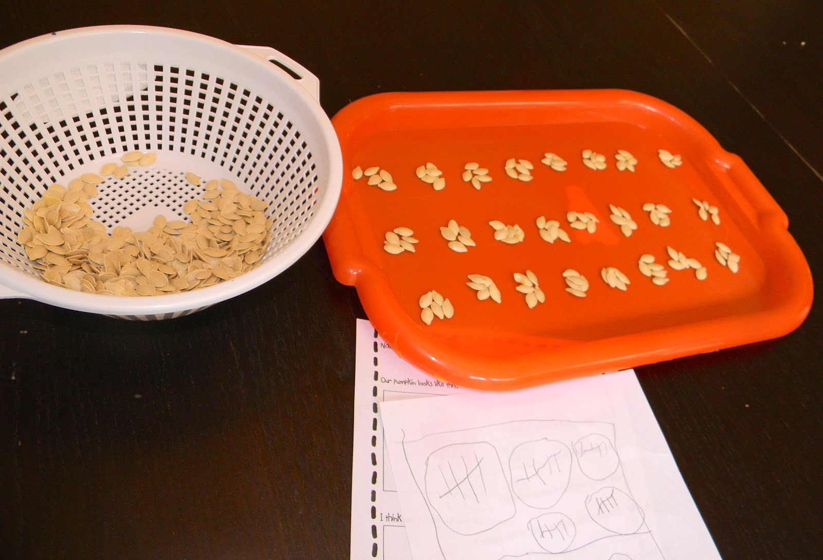 worksheet Parts Of A Pumpkin Worksheet finding the teachable moments pumpkin unit after we gutted our and cleaned dried seeds took on task of counting them finished up i stumbled onto the
