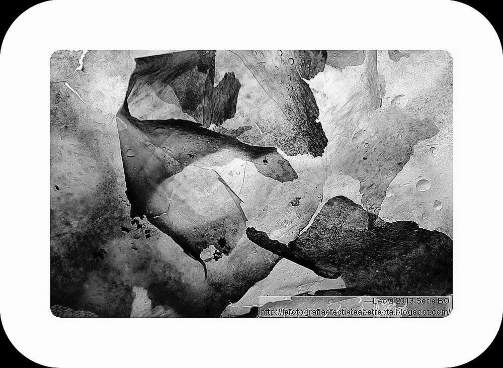 Foto Abstracta 3182  Canción de Otoño de los amores perdidos - Autumn Song of the lost loves