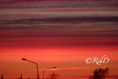 solnedgång, lyktstolpar mot bakgrund av himmel. foto: Reb Dutius