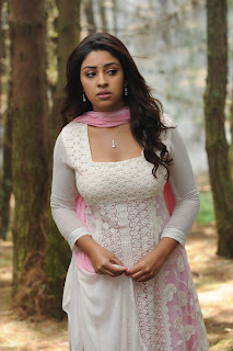 Actress Richa Gangopadhyay Picture Gallery from Sarocharu 0008
