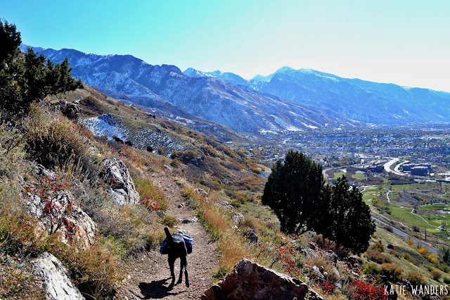 Mount Olympus Trail