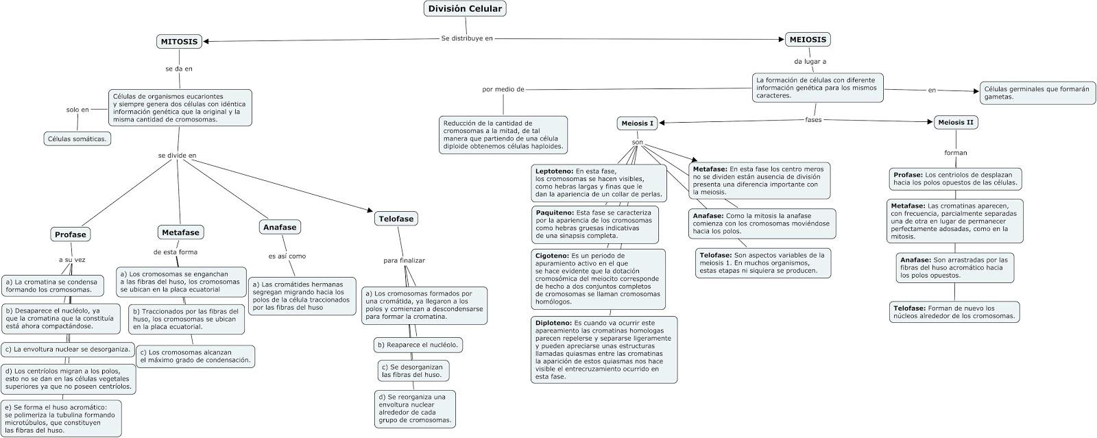 La ciencia de la estructura de la vida - Biologia: 2013
