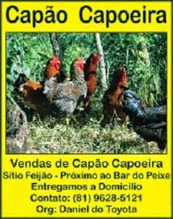 CAPÃO CAPOEIRA