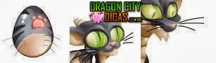 Dragão Gato - Imagens