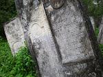 Cemetery in Wisnitz