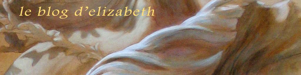 le blog d'élizabeth