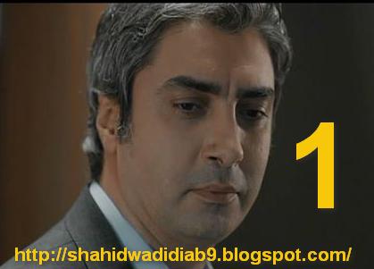 shahidwadidiab8.blogspot.com/2014/09/wadi-diab-9-ep-1-230.html