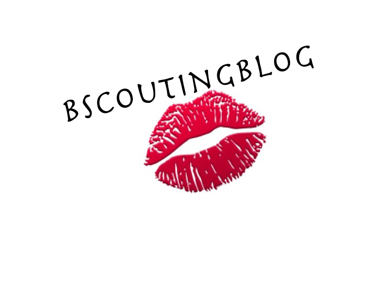 BscoutingBlog