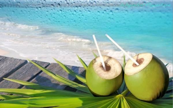Minuman segar sangat disukai masyarakat untuk berbuka puasa, salah satunya air kelapa.
