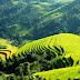 Kinh nghiệm du lịch bụi, phượt Hà Giang
