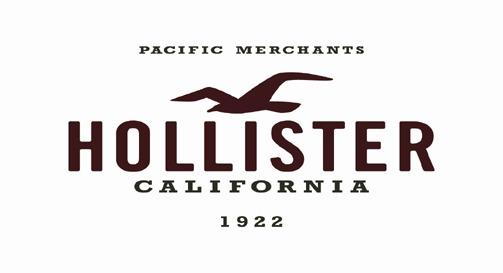 Hollister Logo Car Interior Design
