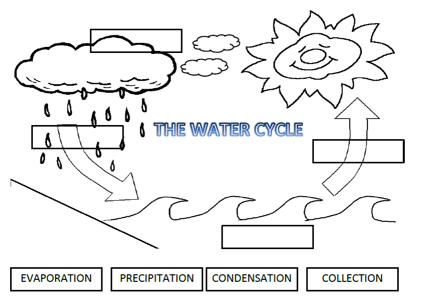 Water Cycle Worksheet Cut And Paste The stranger