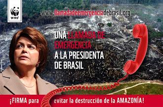 ¡FIRMA para evitar la destrución de la AMAZONÍA!
