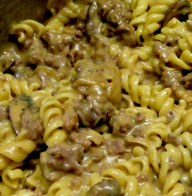 Beef Stroganoff using Carne Picada