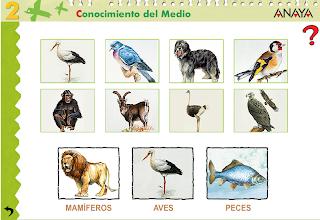 http://www.ceipjuanherreraalcausa.es/Recursosdidacticos/SEGUNDO/datos/03_cmedio/03_Recursos/actividades/03/act1.htm