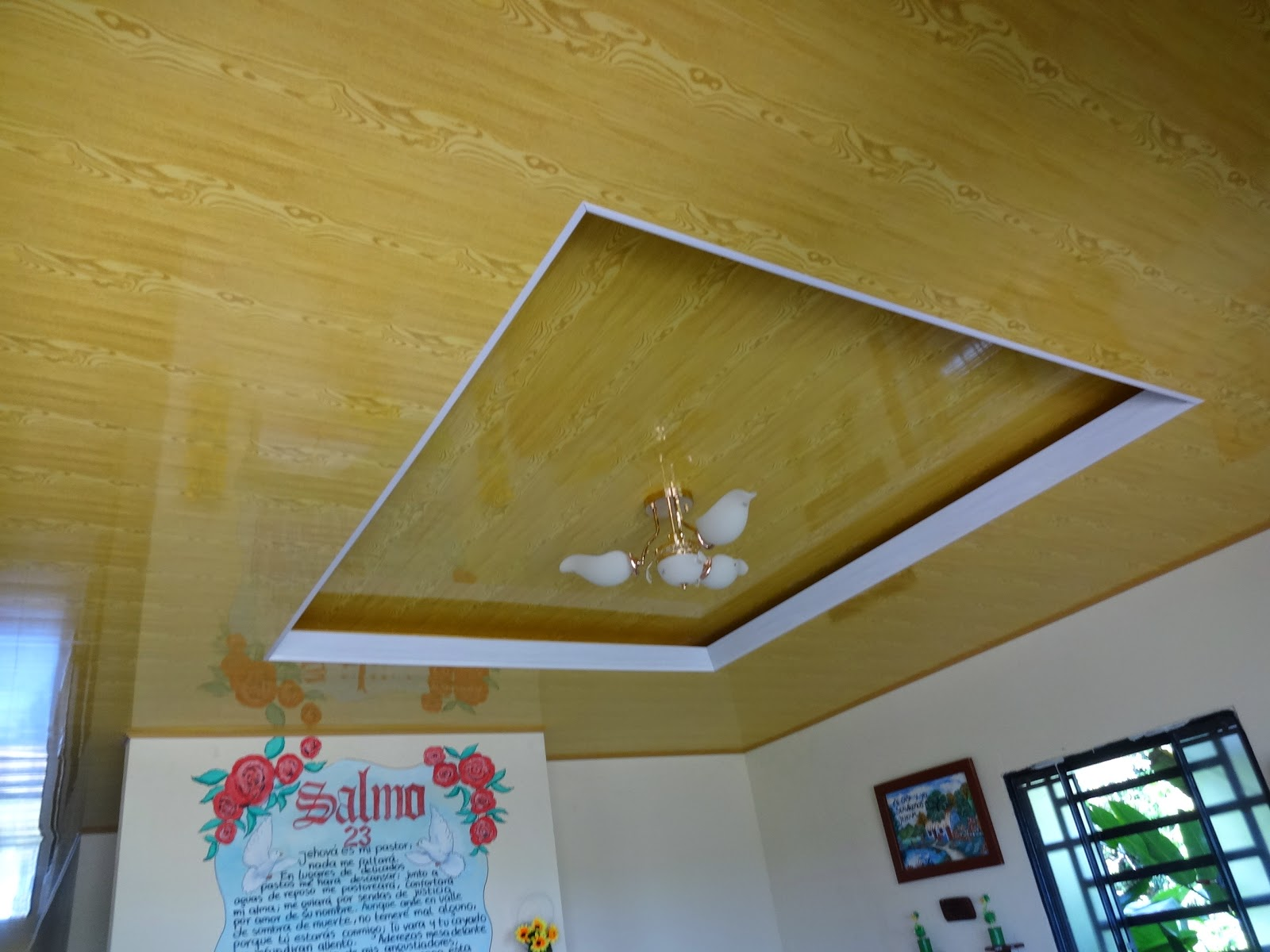 Machimbres del llano pvc cielo rasos julio 2014 for Modelos de cielo raso para salas