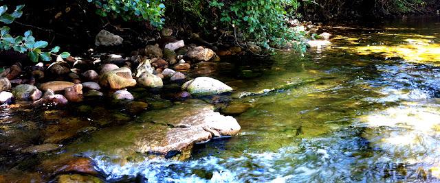 El curso del río, 2015 Abbé Nozal