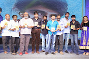 Dikkulu Chudaku Ramayya Audio launch-thumbnail-9
