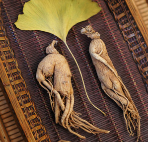 This herb originating from Asia, also known as Asian ginseng (Panax ginseng CA, Meyer)