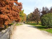 Estamos en Barcelona: Milan and Lake Como (dscn )