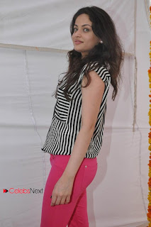 Sneha Ullal Latest Picture Gallery at Antha Nee Mayalone Movie Opening  0017
