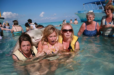 Stingray, Photobomb, animal, fish, photo, image, funny, hot, sexy