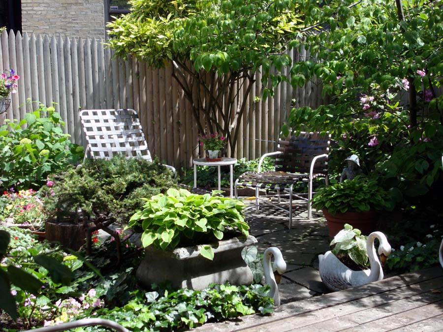 Dr. Dan\'s Garden Tips: Small Space Landscaping