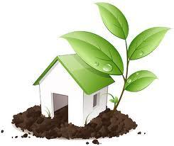 Terapkan Ramah Lingkungan di Rumah Sendiri