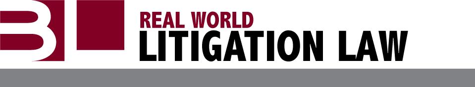 Berenzweig Leonard - Litigation Blog