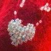 Belajar Kerajinan Manik - Beads