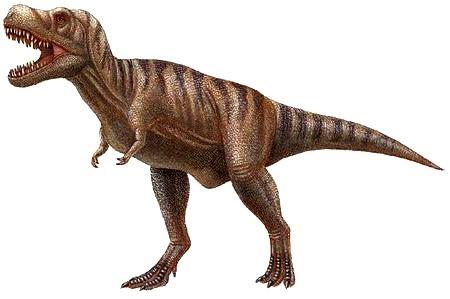 Dibujo de Tarbosaurios o Tarbosaurus