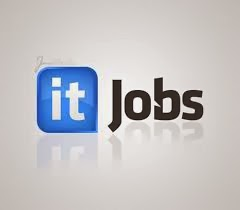 Top IT careers for 2014