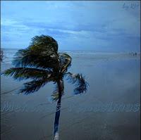 Brisa terrestre, um dos ventos periódicos.