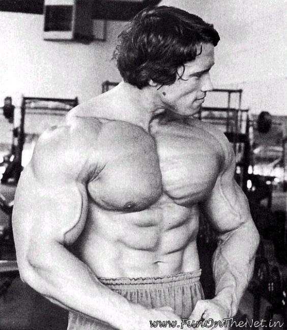 arnolds impact on bodybuilding essay