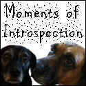 Moments of Introspection