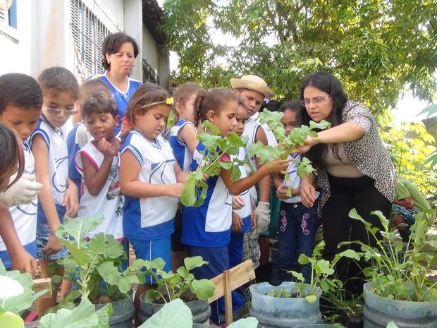 Armario De Quarto Feito De Caixote ~ Blog do Professor Valnir Projeto de horta escolar incentiva educaç u00e3o ambiental em Maceió