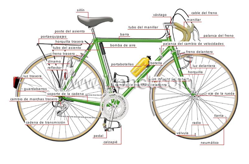 la dinamo de una bicicleta: