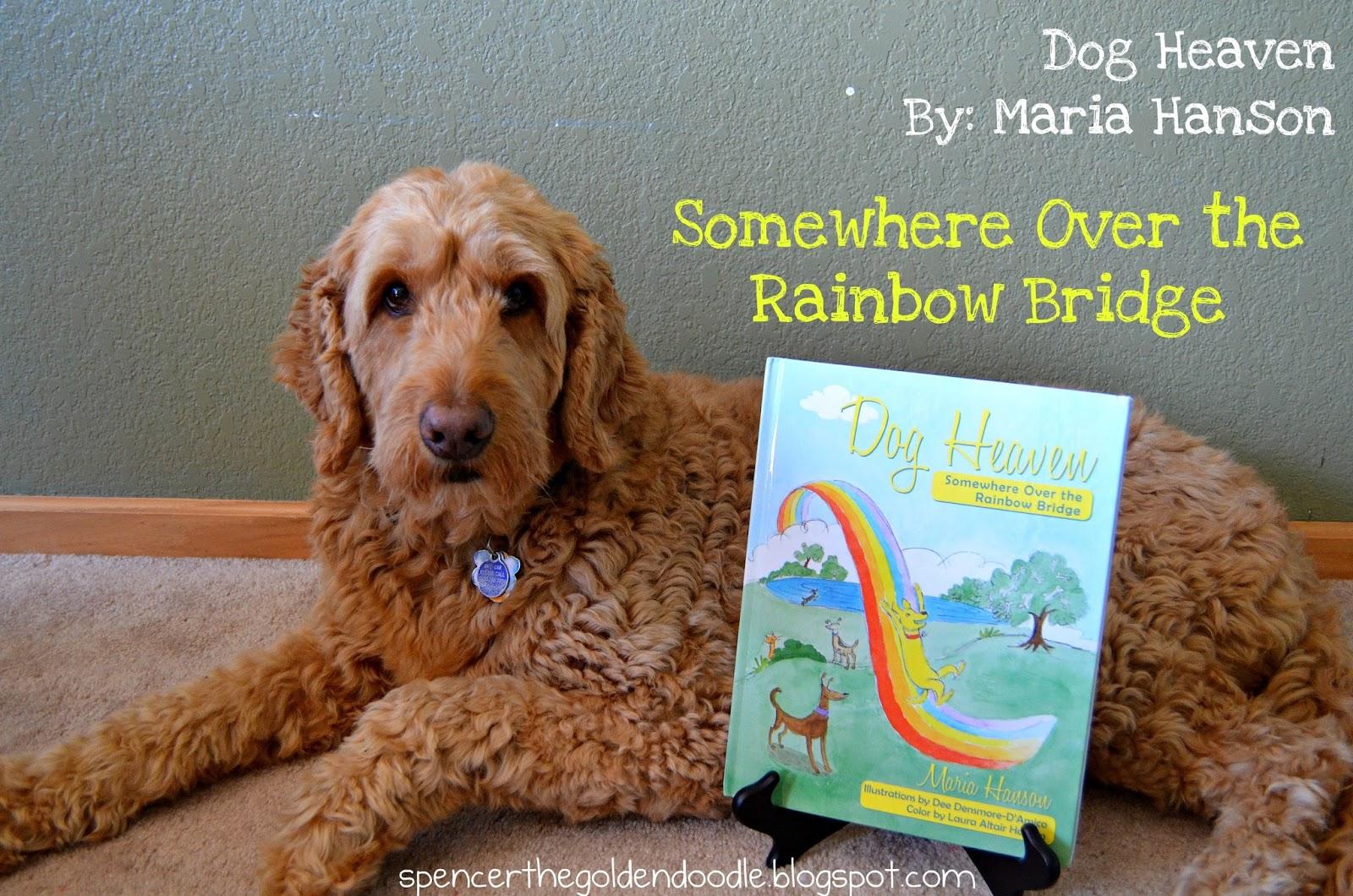 spencer the goldendoodle pet memorial book diy paying it forward